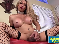 Busty shemale tugging her tiny cock to climax